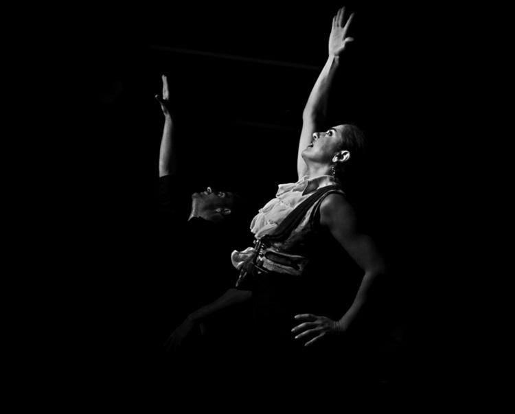 Flamenco (17 images)